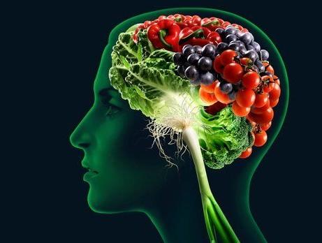 alimento-para-el-cerebro