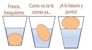 huevo (1)